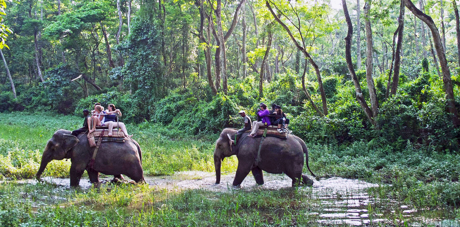 3 Days Chitwan WildLife Tour